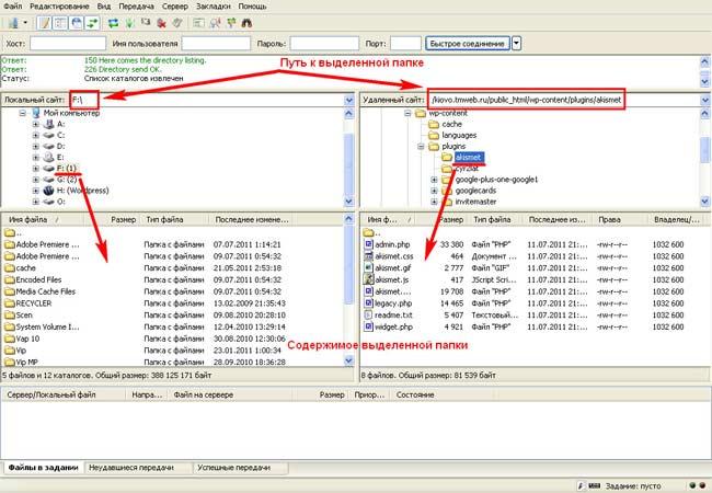 Окно бесплатного FTP-клиента FileZilla_Programa FileZilla