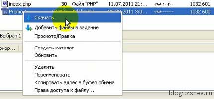 Скачать файл в FileZilla _Skachat FileZilla