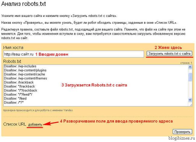 Анализ файла robots.txt