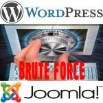 Защита WordPress от брутфорс атак