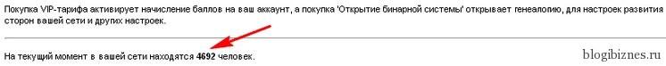 Бинарная ДНК система в сервисе qwertyPAY