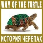 Форекс: история создания Turtles