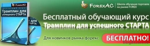 Бесплатный курс по торговле на Форекс