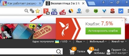 В окне браузера Хром появилась кнопка для активации кэшбэка