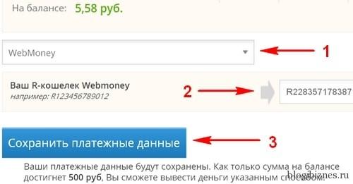 Выбор способа оплаты и ввод платежных данных