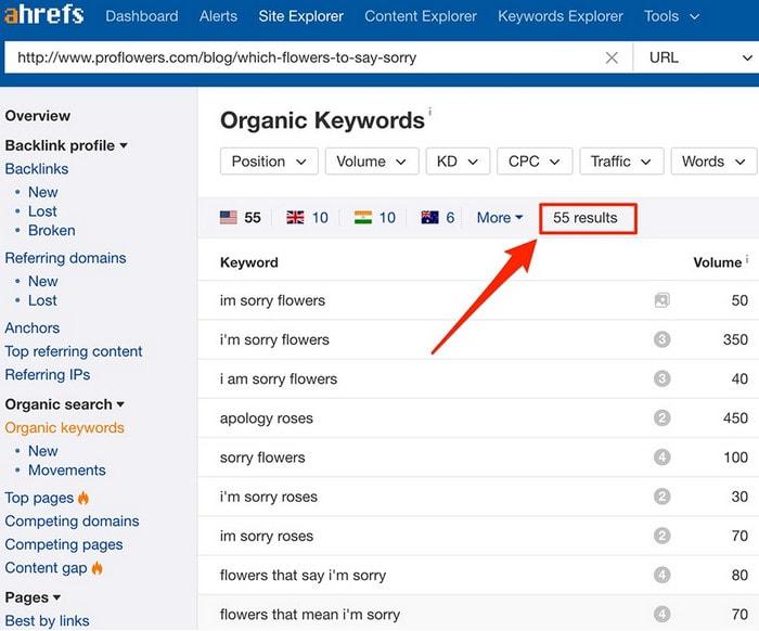 organic-keywords-16